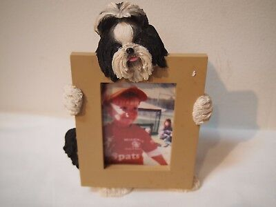 Frame with Shih Tzu hugging a picture