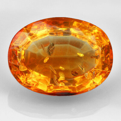 15.3CT Baltic Golden Amber With Insect Faceted Elliptical Cut Natural UQFP190