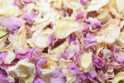 Pale Pink Ivory Real Petal Biodegradable Wedding Confetti 1 Litre 12 Guests