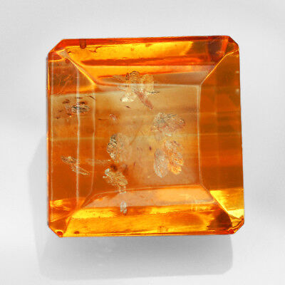 16.3CT Baltic Golden Amber With Insect Faceted Square Cut Natural UQFP192