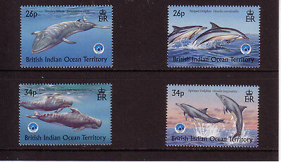 British Indian Ocean Territory 1998 Whales & Dolphins 4v MNH