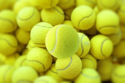 24 Tennis Balls Sports Tournament Outdoor Fun Cricket Beach Dog Activity Game