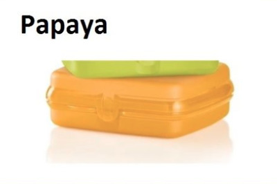Tupperware Sandwich Keeper Papaya Orange Hinged Lid Great for Crayons & Toys New