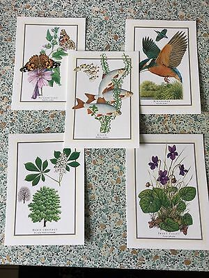 Readers Digest Postcards 5 In Set Collectible 1994 New