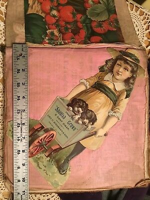 Antique Victorian Scrap Book w/Advertising Trade Cards  approx. 250 cards