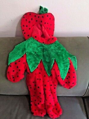 Infant Baby Girls Strawberry Costume Size 12 months Elastic Waist Warm EUC