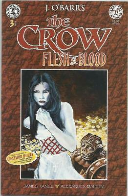 THE CROW: FLESH & BLOOD (1996) #3 Back Issue (S)