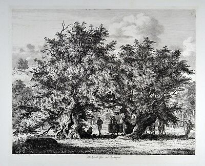 Jacob George Strutt 1825 - The Great Yen at Fortingal - Fortingall Yew Eibe