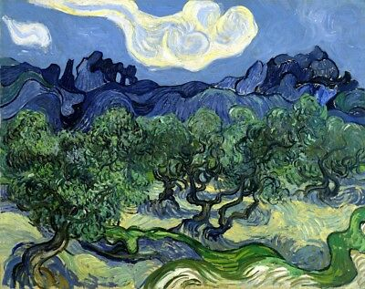 The Olive Trees Painting by Vincent van Gogh Art Reproduction