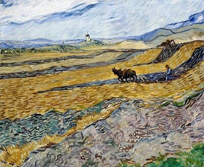 Enclosed Field with Ploughman Painting by Vincent van Gogh Art Reproduction