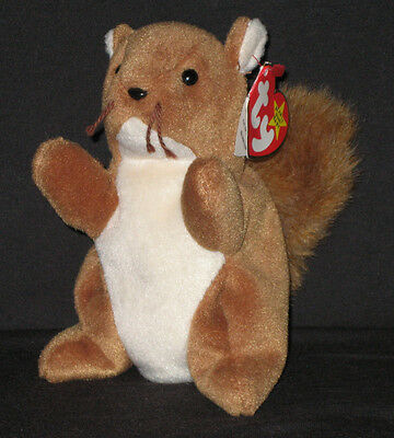 TY NUTS the SQUIRREL BEANIE BABY - MINT with MINT TAG