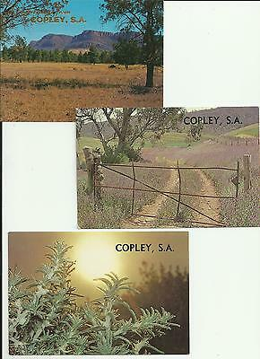 3 vintage & pretty postcards from Copley SA  2 are scenes fr  Mossel bros film