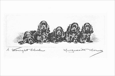 Cocker  Spaniel Puppy Dogs  Marguerite Kirmse 1924  8 New Large Note Cards