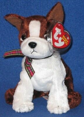 TY SPORT the DOG BEANIE BABY - MINT with MINT TAGS