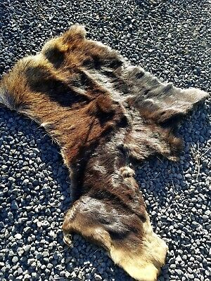 Tanned Moose Hide fur pelt Alaskan Moose Hide, DEER, Elk, Log Cabin Decor Crafts