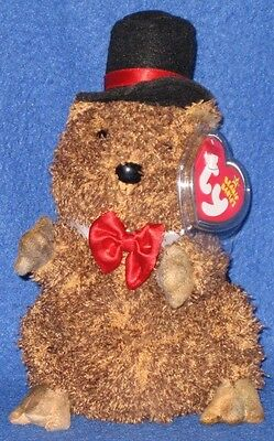 a6e97473175 Ty Punxsutawney Phil 2006 Groundhog Beanie Baby - Mint Tags - Coc Pa  Exclusive