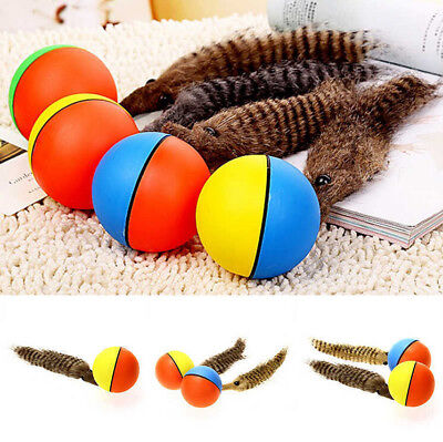 Pet Dog Puppy Cat Weasel Appears Motorized Rolling Jump Moving Ball Alive Toy