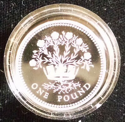 Great Britain: 1986 proof silver pound, with the Emblem of No. Ireland: Flax
