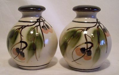 Australian Pottery Ian Cook Salt Pepper Shakers Hand Painted Gum Leaf Flower