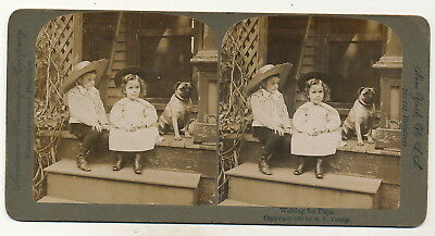 "2 Kinder mit Hund ""Waiting for Papa"" - Stereo 1897"