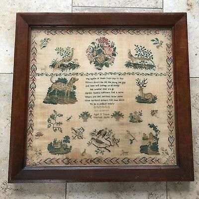 Large Antique Sampler Ann Anderson 1847 Aged 11 Years Therfield Herts Fabulous