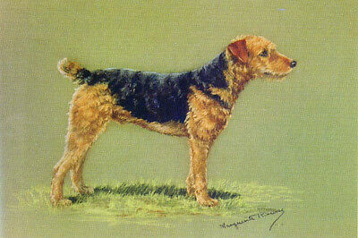 Airedale Terrier Dog 1920's by Marguerite Kirmse~ New  Large Note Cards