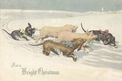 Doxie Dog Puppies & Pigs K. Feiertag 1915 8 LARGE New Blank Christmas Note Cards