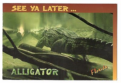 See ya later alligator postal mailbox sleeve statue for Alligator lawn decoration
