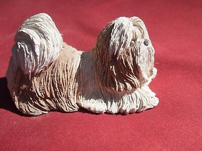 Beautiful Gold and White Shih Tzu made by Sandicast