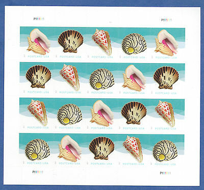 US SC#5163-5166 Seashells Stamps (Postcard Rate $0.34) a pane of 20 Stamps ~2017