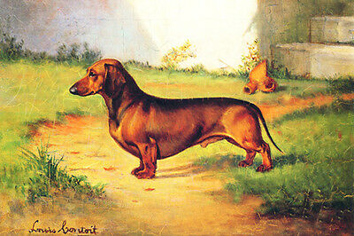 Dachshund Dog by Louis Cotoit 1930 - LARGE New Blank Note Cards CUTE!