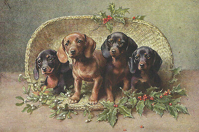 Dachshund Dog Puppies 1904 Carl Reichert - LARGE New Blank Christmas Note Cards