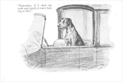 Airedale Terrier Dog  Marguerite Kirmse~ New  Large Note Cards  1926 GUARDs CAR!