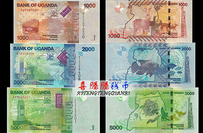Uganda 1000 + 2000 +5000 Shillings BrandNew Banknotes set 3PCS