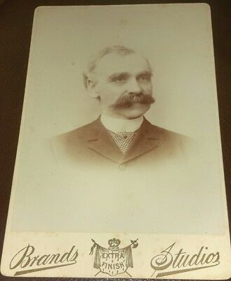 Vintage Old 1890's Cabinet Photo of Man Bushy Thick Mustache BRANDS Chicago IL.