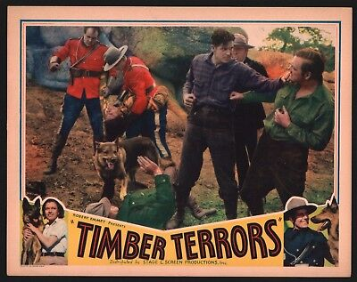 TIMBER TERRORS Lobby Card (Fine+) 1935 Royal Canadian Mounted Police Movie 1353