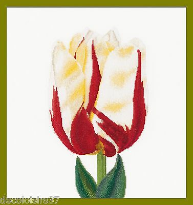 Thea Gouverneur 516 Llama single late Tulip - Lino