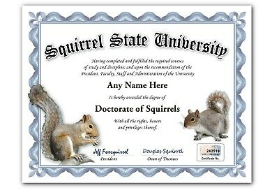 Squirrel State University Personalized Diploma w/ Gold Seal Novelty Funny Gag