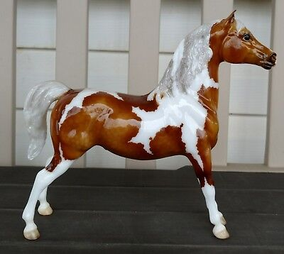 "Breyer 2018 Web Special Run Glossy Pinto Stetch Morgan ""Kaibab"". 1/350. NEW!"