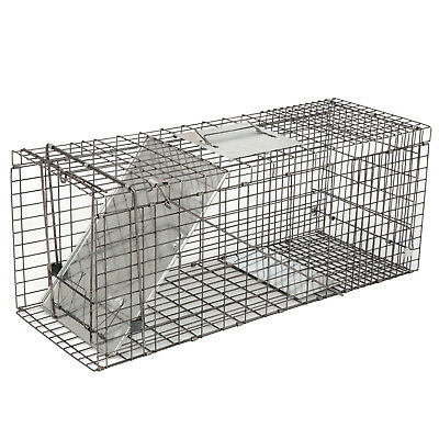 """32"""" Humane Animal Trap Steel Cage for Live Rodent Control Rat Squirrel Raccon"""
