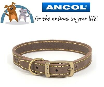 Ancol Timberwolf  Sable Leather Dog Collar All Sizes Available In Dropdown