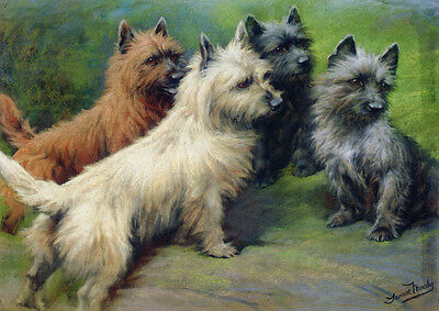 Cairn Terrier Dogs 1897 by Fanny Moody ~ LARGE New Blank Note Cards