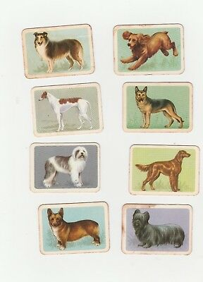 Vintage TUCKFIELDS TEA Trade Cards - POPULAR DOGS x 8 Ty-Nee Tips Mixed Back