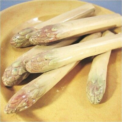 ' ASSIETTE ASPERGE EN TERRE CUITE EMAILLEE @ SHIPPING WORLDWIDE - Légume Potager