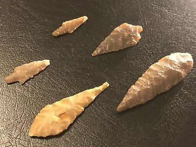 5 Sahara Desert Neolithic Arrowheads Artifacts Ancient Arrow
