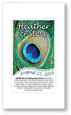 Birthday Party / Wedding Anniversary Favors Seed Packets - Peacock Feather Decor