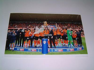 WOLVERHAMPTON WANDERERS FC WOLVES FC 2013-14 LEAGUE ONE CHAMPIONS 7x5 PHOTOGRAPH