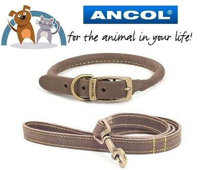Ancol Timberwolf Leather Dog Puppy Round Collar & Lead Leash Set Sable All Sizes