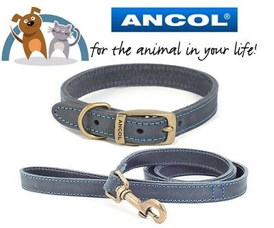 Ancol Timberwolf Leather Dog Puppy Flat Collar & Lead Leash Set Sable All Sizes