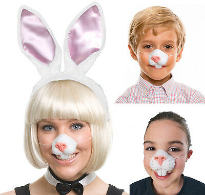 Easter Bunny Rabbit Nose And Teeth Costume Mask
